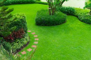 Landscape Design & Construction Services Arlington, TX