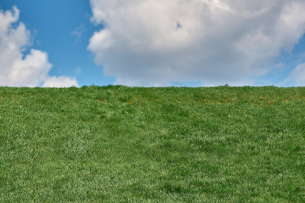 What Are Some Ways to Deal With a Sloping Lawn
